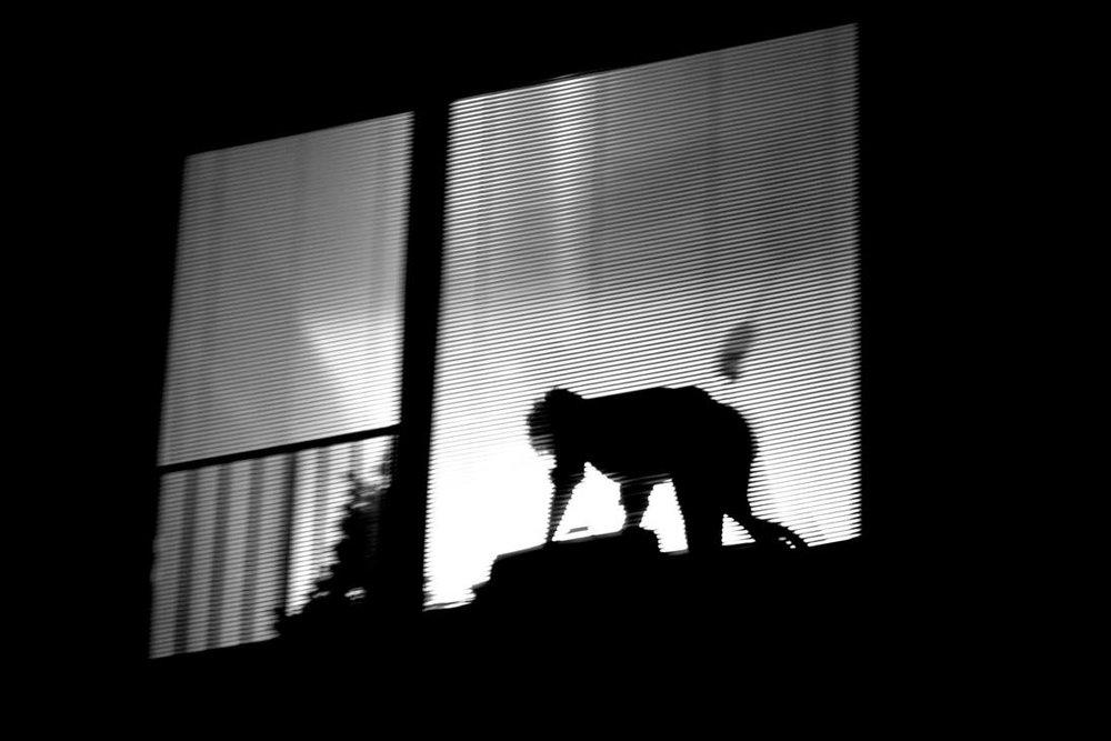 but_a_shadow_in_the_night_by_batsceba_d89lfgx-pre.jpg