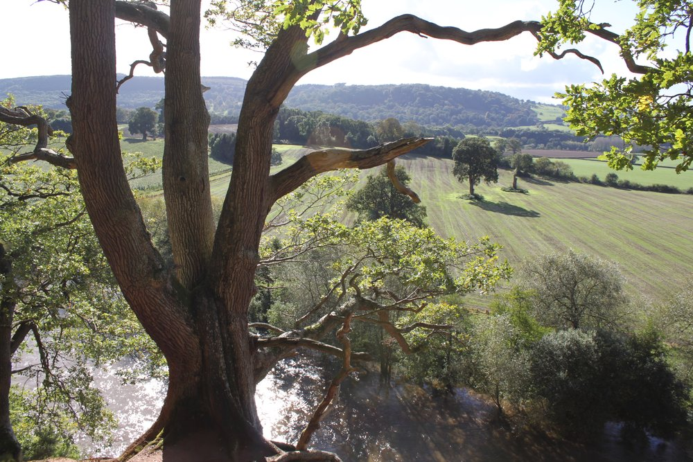 The Wye Valley: Beautiful walks in Herefordshire
