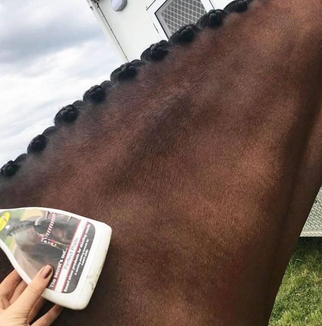 @ava__equestrian.jpg