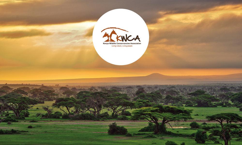 KWCA_Banner.jpg