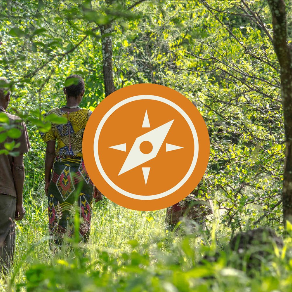 Geographic Focus - We look for organizations that are working in landscapes, ecosystems or countries where conservation outcomes are particularly important.