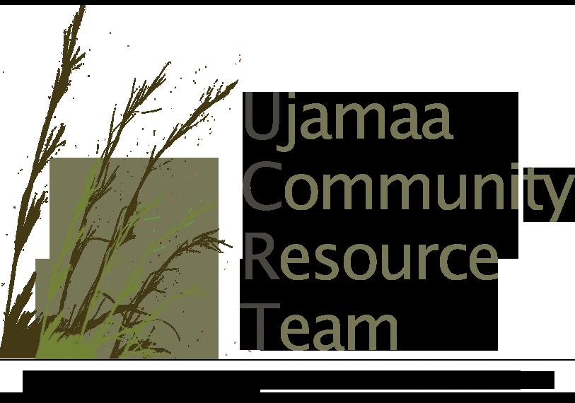 UCRT logo_transparent.png