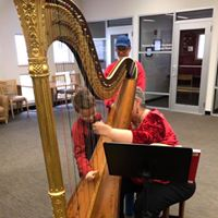 Holiday harpist shares the music -