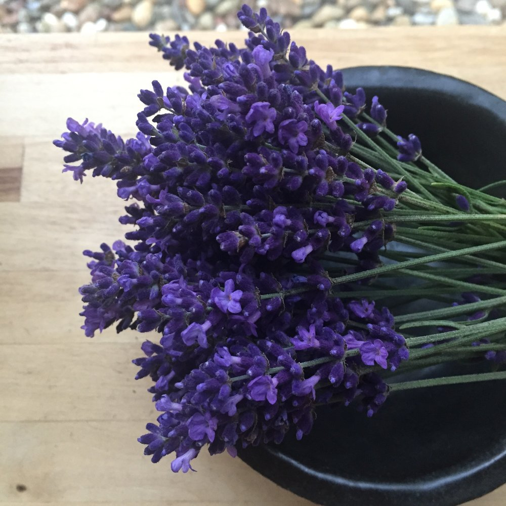REF:55 'Lavandula angustifolia'  Lavande, lavender  add flowers and leaves to stews flavour sugar with lavender petals. Add sprigs to drinks.
