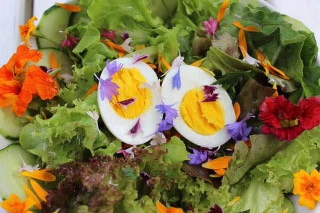 EGG SALAD WITH EDIBLE FLOWERS