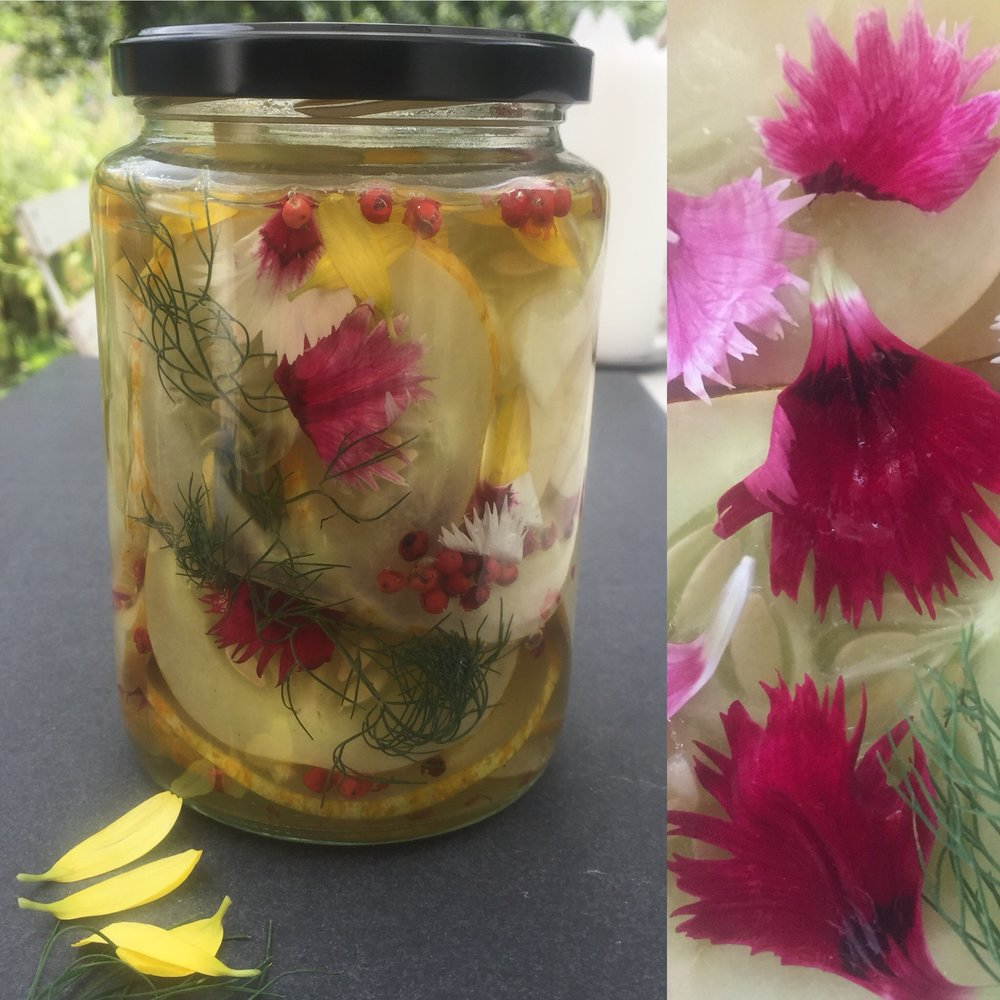 PICKLED CUCUMBERS WITH DILL AND DIANTHUS PETALS