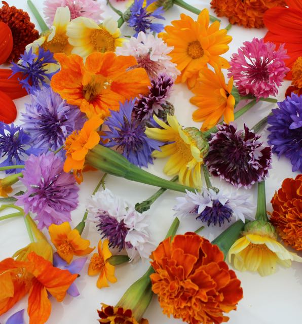 REF:104    boîte de fleurs mixte de saison (55 pieces)  seasonal mixed flower box