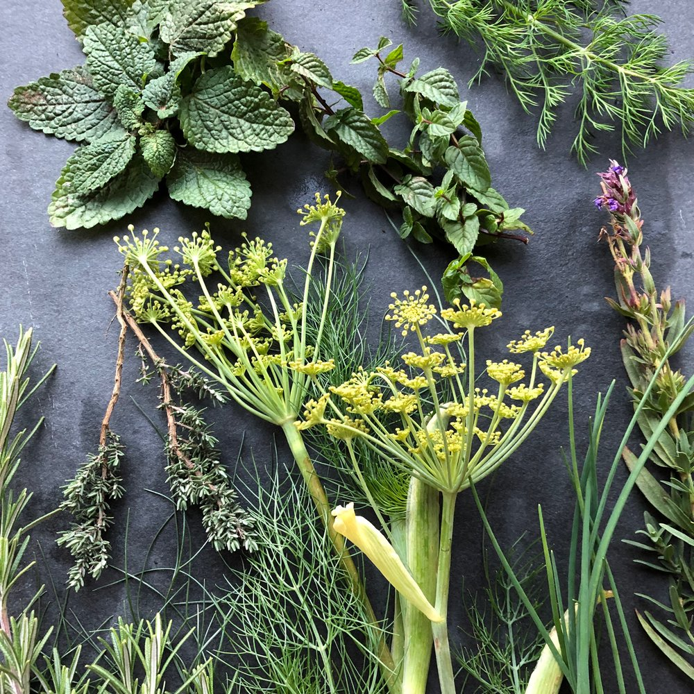 REF:110    boîte à herbes mixte de saison (15 pieces)  seasonal mixed herb box