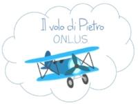 Logo IVDP.jpg