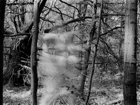 Untitled, (Austerlitz, NY #11)