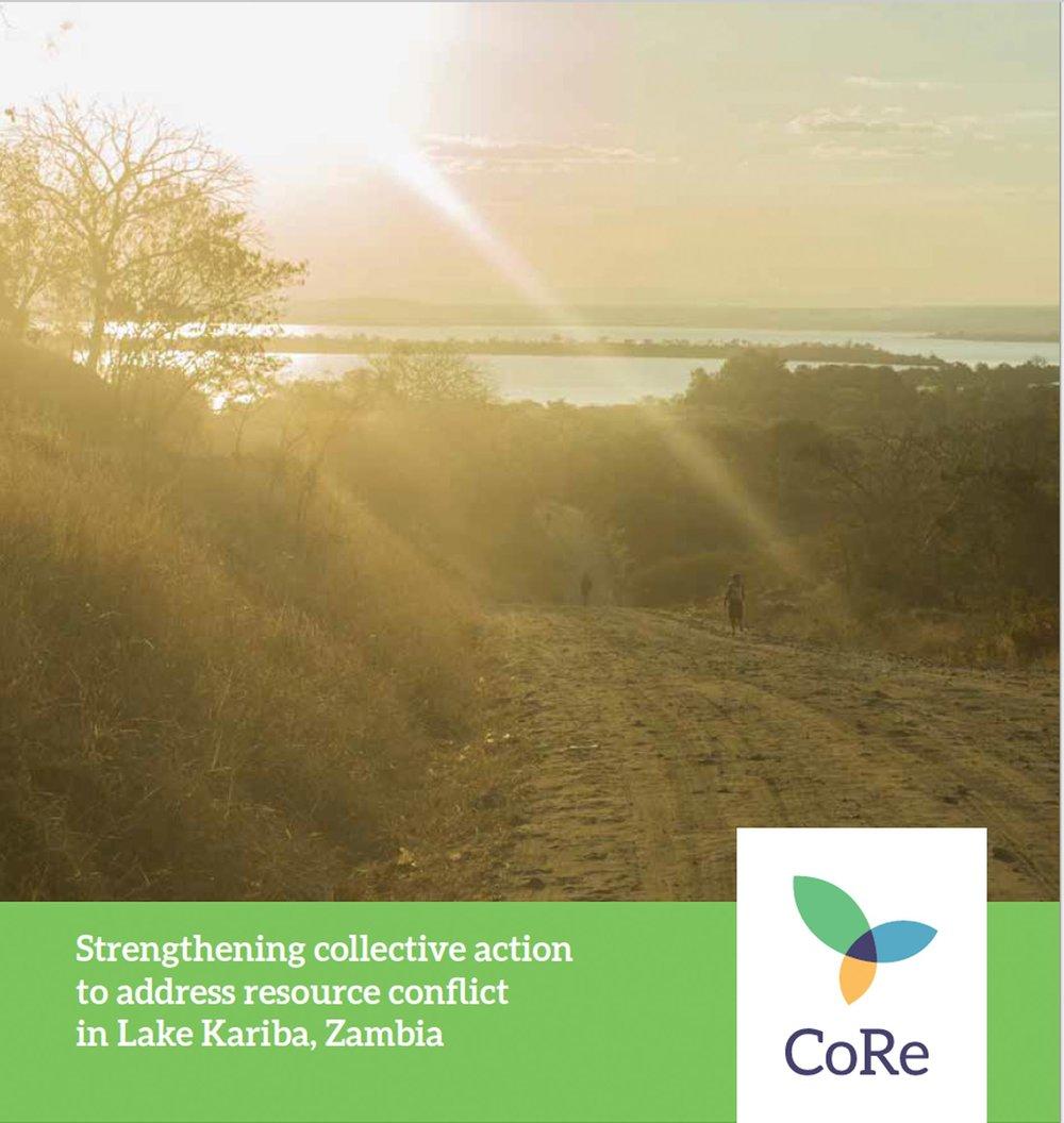 STARGO Report Zambia.jpg