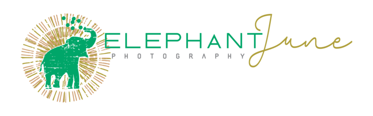 Elephant June Photography