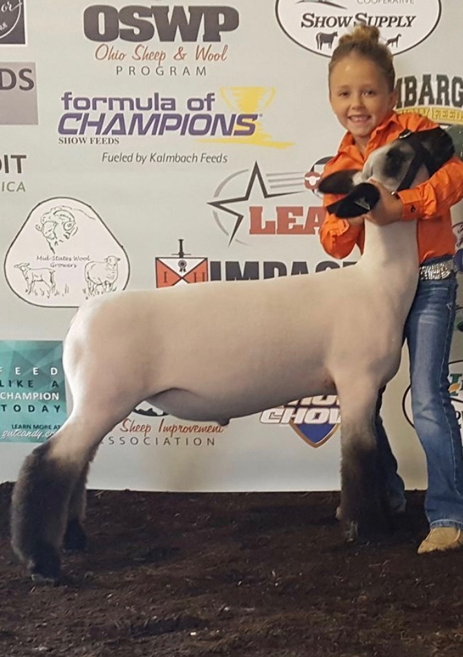 Champion Novice - @ Scarlet & GrayShown by: Brynn Huntsman