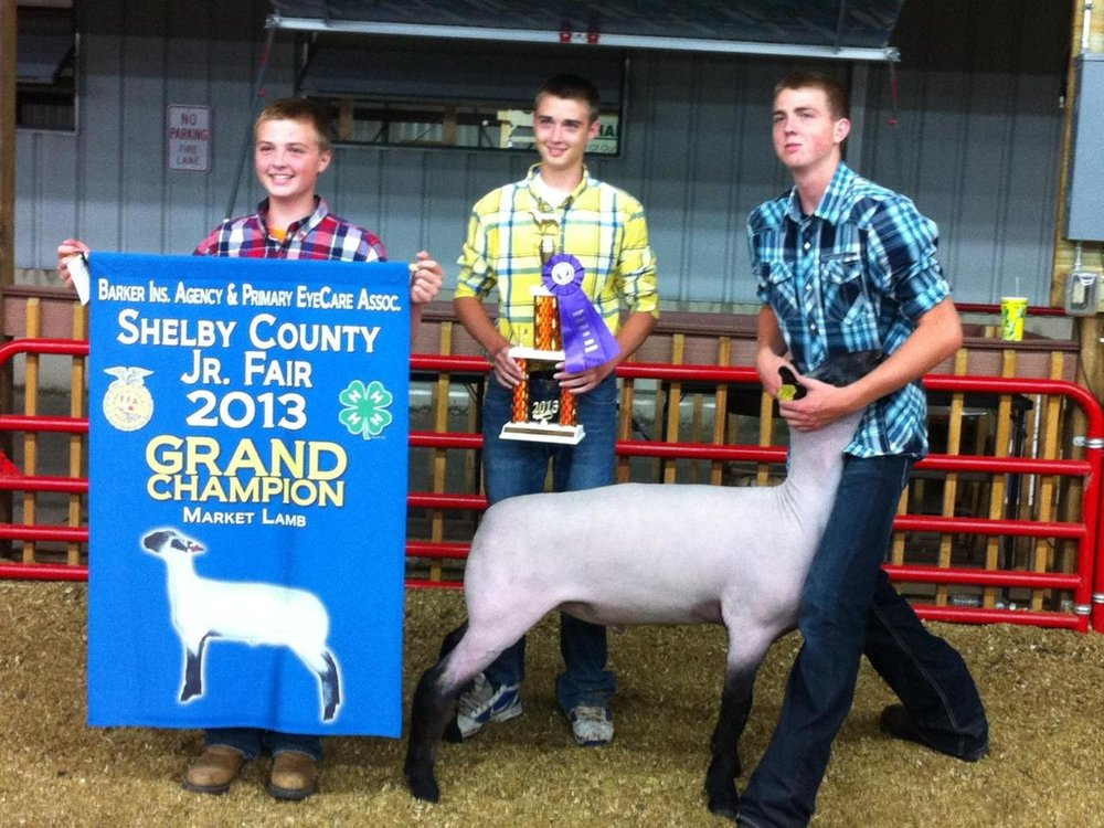 Grand Champion - @ Shelby County Fair 2013