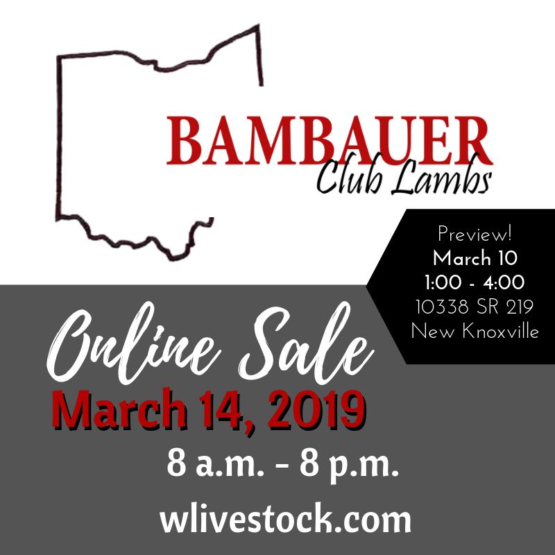 2019 Online Sale.png
