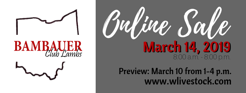 2019 bambauer lamb sale banner.png
