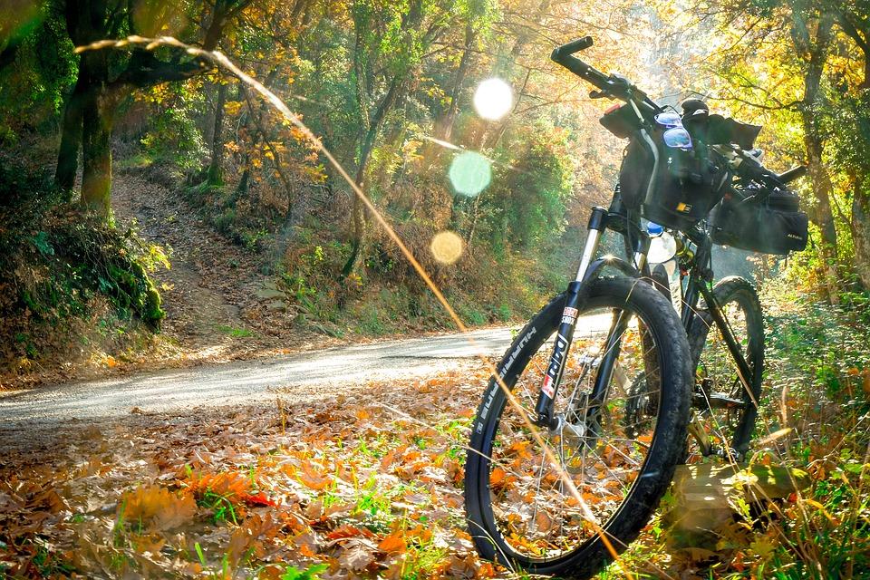 cycling-2846201_960_720.jpg
