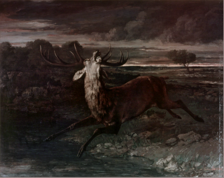 Gustave Courbet - Le Cerf forcé