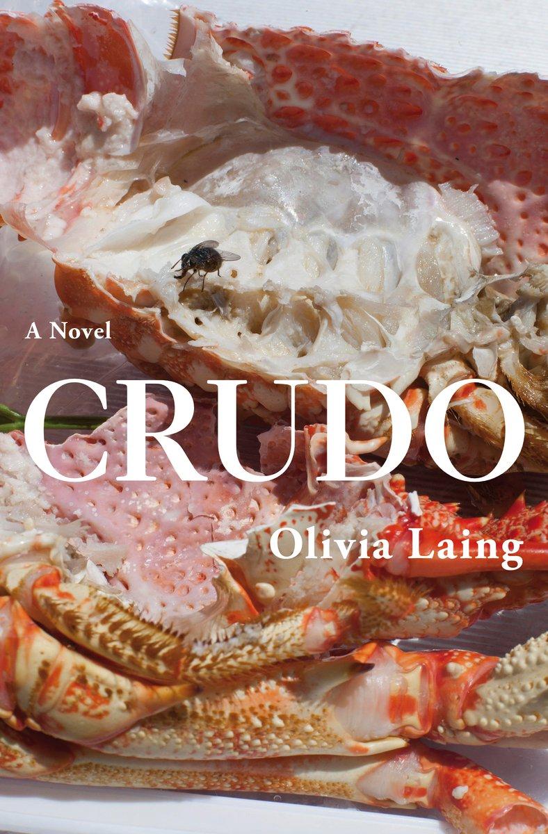 Olivia Laing - Crudo