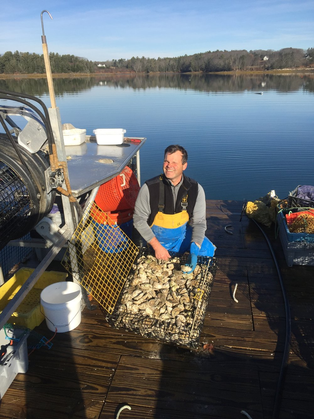 Dave, why did you decide to start an oyster farm? -  I began digging clams at age 12 , I found Belons in Fitch Cove and talked Mike Farrin into buying them in South Bristol in 1987. After lobstering for 16 years I bought oyster seed when clam digging declined. I began full time oystering in 2012.