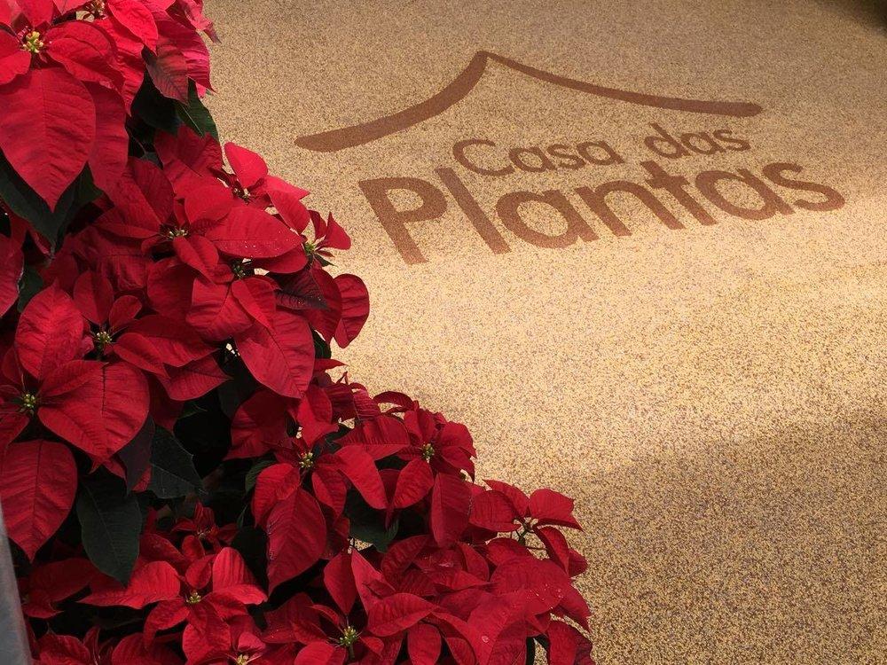 Casa das Plantas 03.jpg