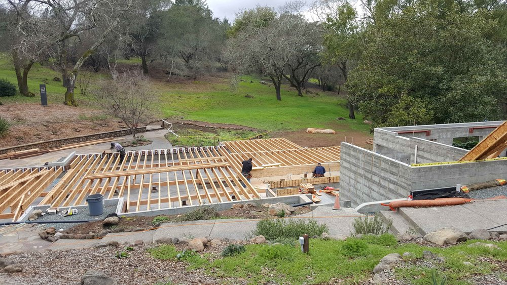 Floor Framing Stage