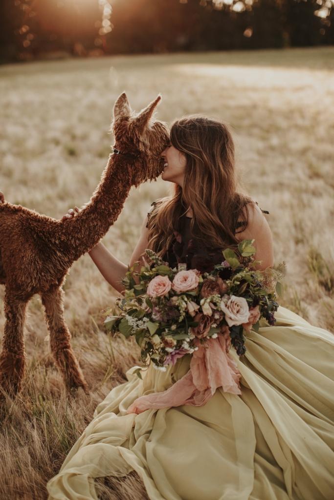 alpaca_styled_shoot_dawn_photo_15.jpg