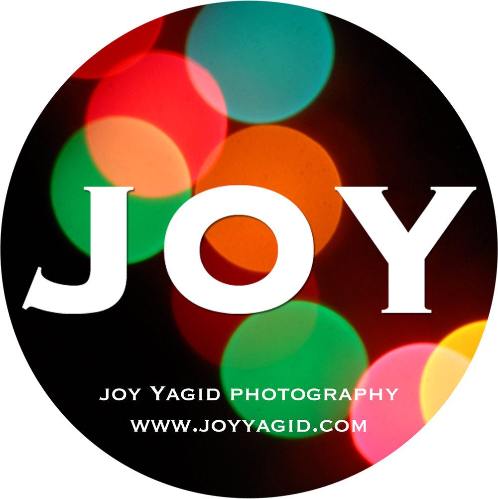 Joy Yagid Photography logo.jpg
