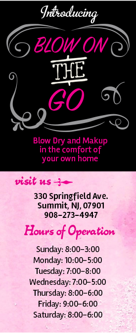 Blow in Blow Out biz info image.png