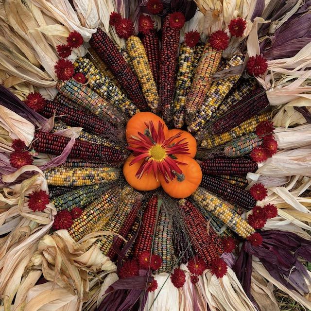 Harvest Art.jpg