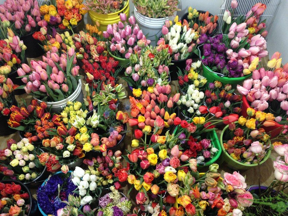 Flower Cooler in Spring.jpg