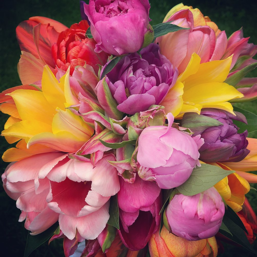 Rainbow Bouquet.jpg