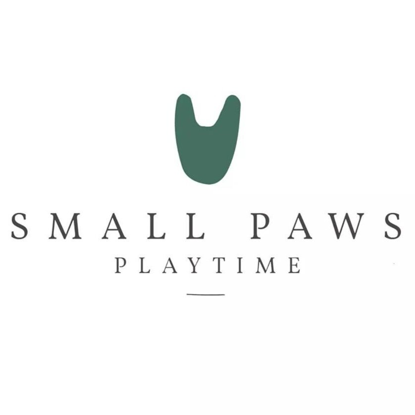 Small Paws Playtime
