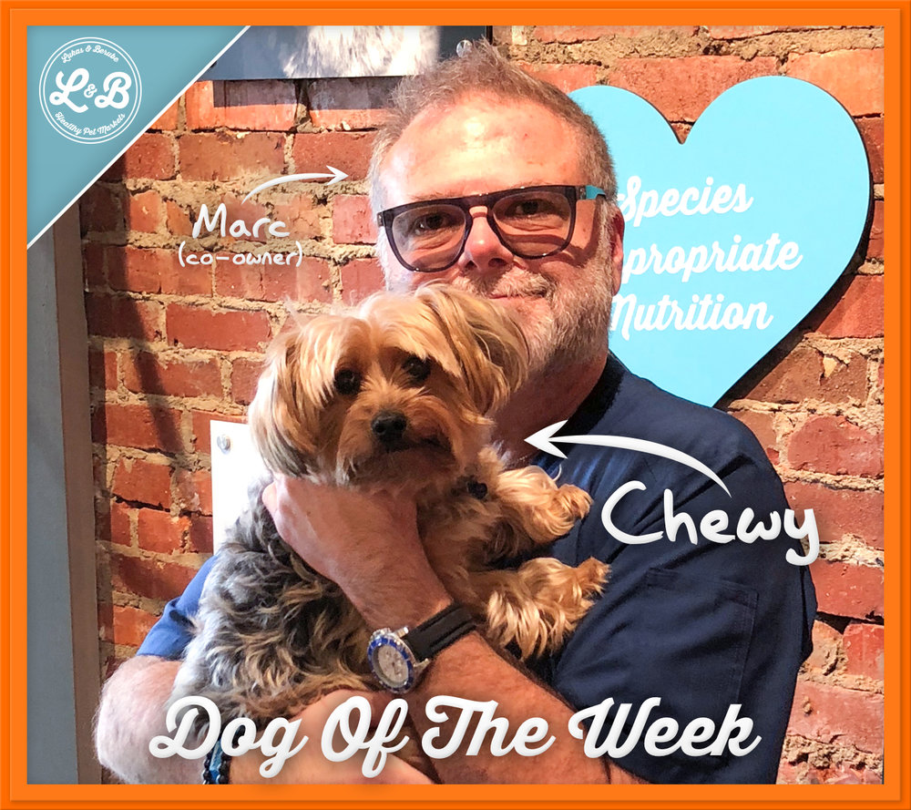Chewy.jpg
