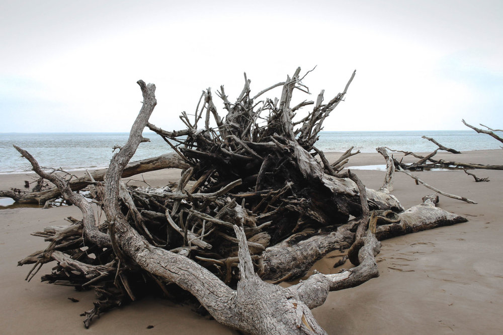 big talbot beach
