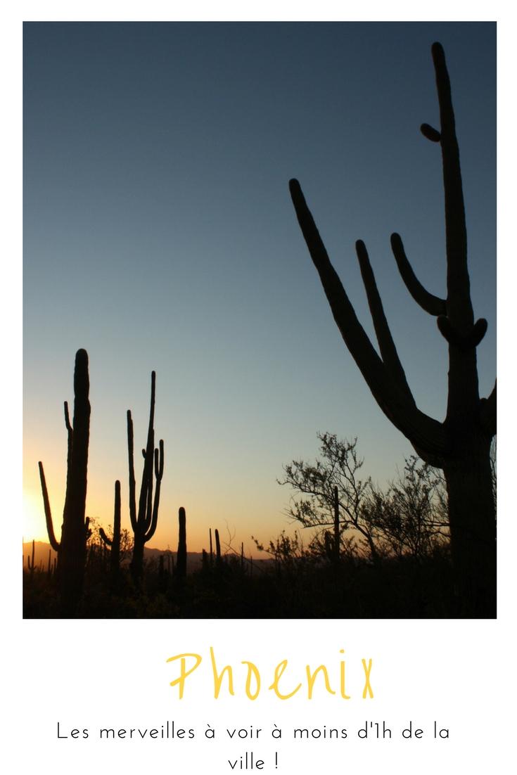 Que faire àPhoenix ? Découvrir le parc Saguaro, la ville fantôme de Jérome, Sedona et Scottsdale !