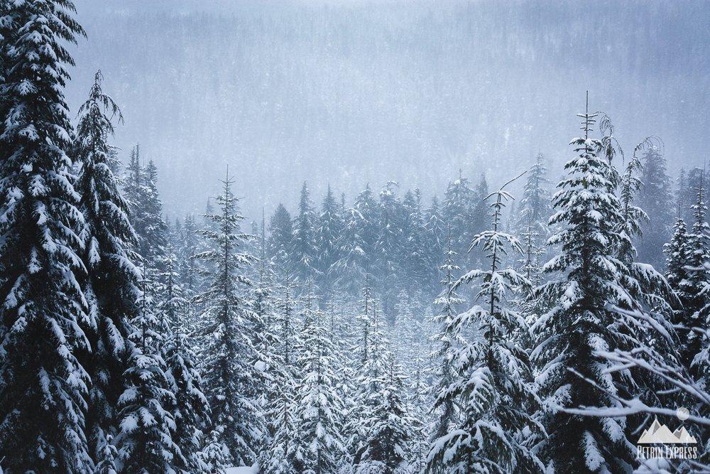 Mont Hood, Oregon