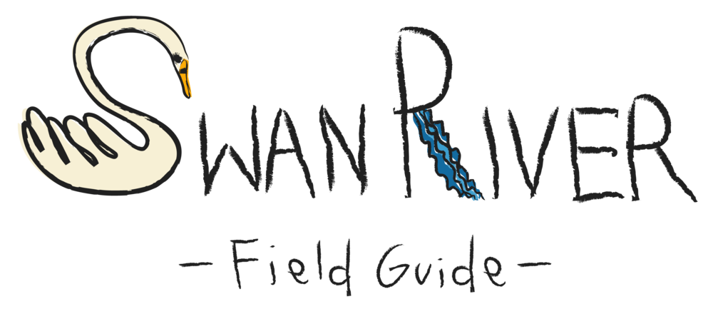 Swan River Field Guide