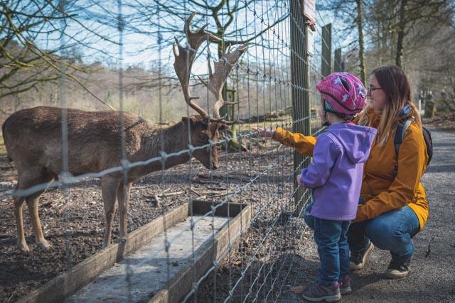Tierpark Olderdissen in Bielefeld