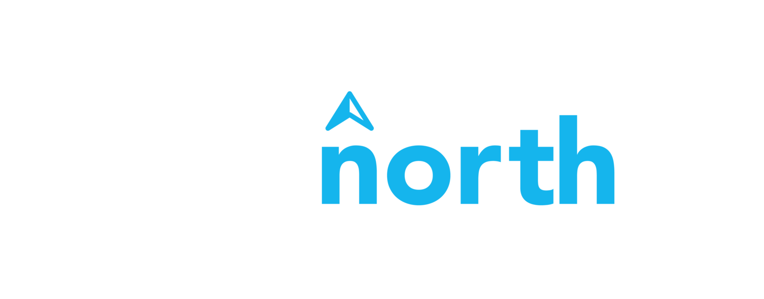 The North Consulting