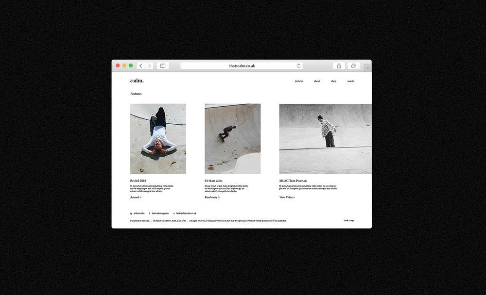 web-2.jpg