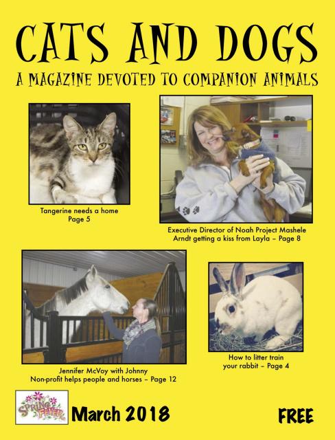 CatsAndDogsMarch2018cover.jpg