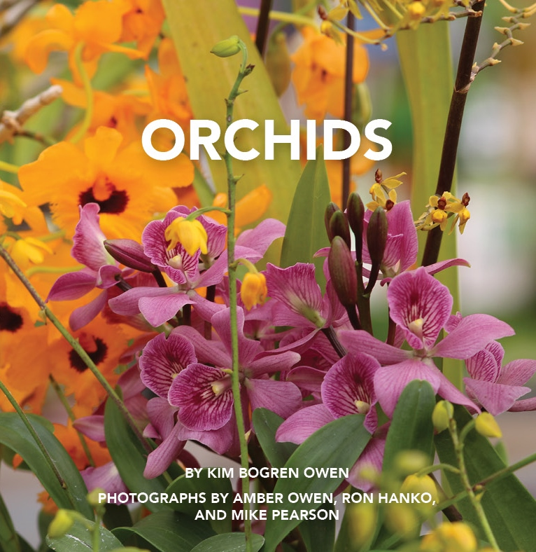 KimO_Orchids cover final (2).jpg