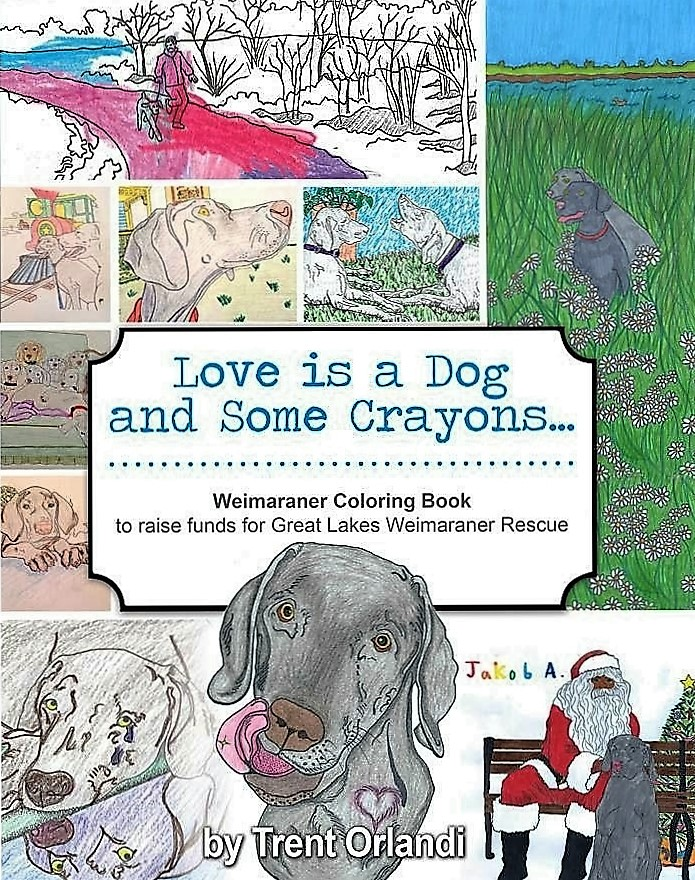 cover coloring book.jpg