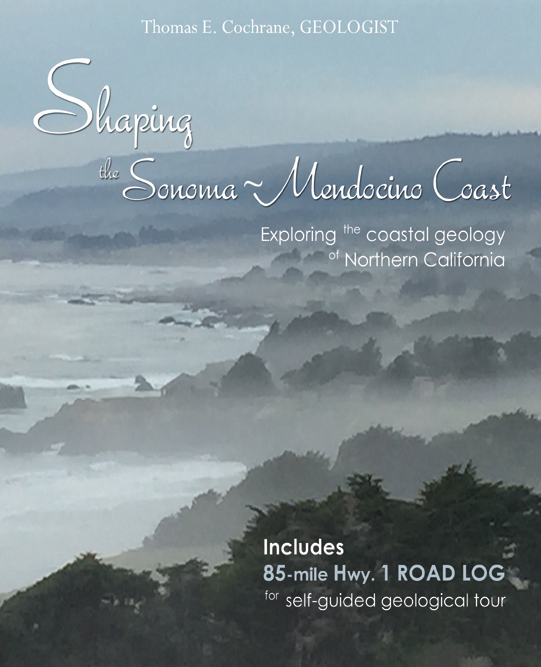 Cochrane cover_book #1.jpg