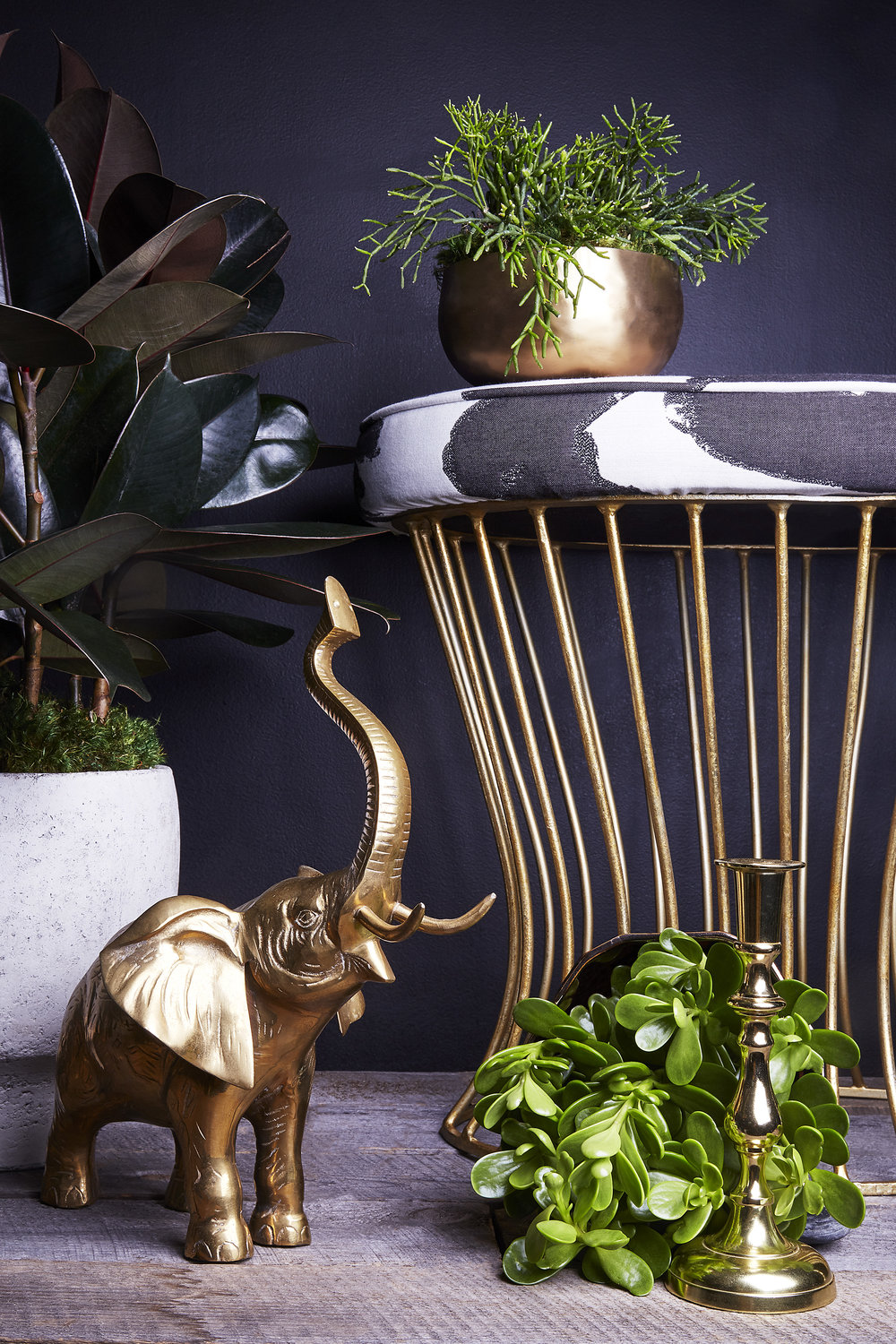 STYLING WITH PLANTS -