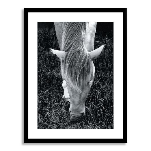 f5675-minted-for-west-elm-mystery-horse-c.jpg