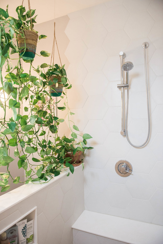 hanging-plants-bathroom.jpg