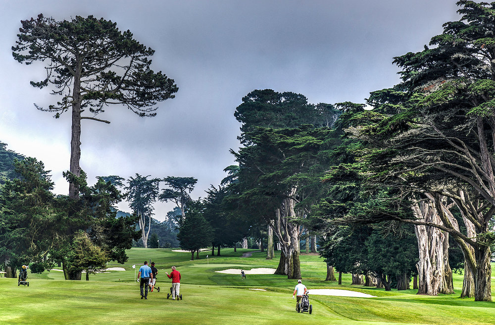TPC HARDING PARK   Surrounded by Lake Merced on three sides, this stunning municipal golf course is part of the PGA Tour network.