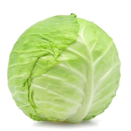 CABBAGE -